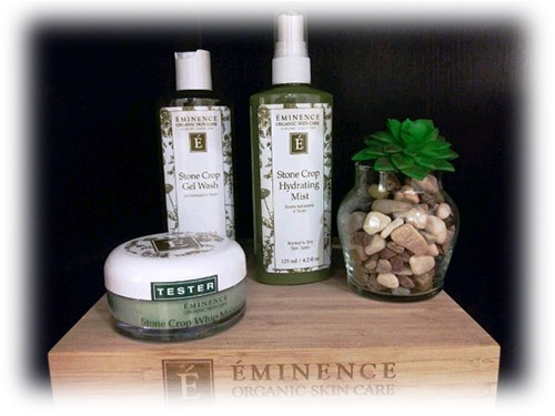 TFC-Skincare-Services